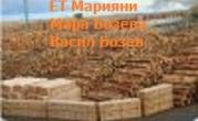 ЕТ Марияни - Мара Бозева - Васил Бозев