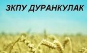 Земеделска кооперация за производство и услуги Дуранкулак