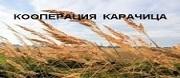 Кооперация Кооперация Карачица - кооперация карачица, селскостопанска продукция, земеделска техника, селско стопанство, пшеница, ечемик, слънчоглед, царевица