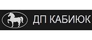 ДП Кабиюк ТПП